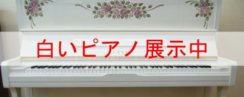 白いピアノ展示中
